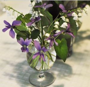 violets and lilly of the valley