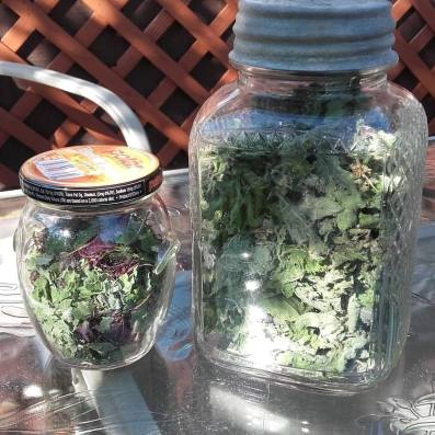Dried Bee Balm and Mint